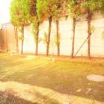 ■広々南庭付きの戸建です!
