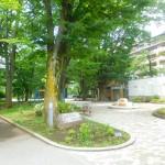桜堤公園 徒歩1分