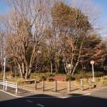 ■市民の森公園 徒歩3分